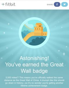 Screenshot - FitBit Badge